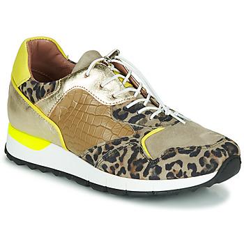 Sapatos Mulher Sapatilhas Mjus CAST Cáqui / Leopardo