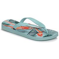 Sapatos Criança Chinelos Ipanema CLASSIC VIII Azul
