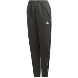 Textil Rapaz Calças adidas Originals - Pantalone verde ED5762 VERDE