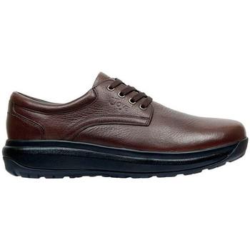Sapatos Homem Sapatos & Richelieu Joya Sapatos  MUSTANG 2 BROWN
