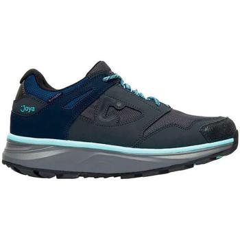 Sapatos Mulher Sapatilhas Joya Sapatos  BLISS STX GREY