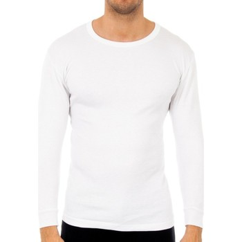 Roupa de interior Homem Camisolas de interior Abanderado Pack-3 camisetas fibra m/l blanco Branco
