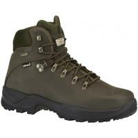 Sapatos Homem Botas baixas Chiruca Botas  Teckel 01 Goretex Verde