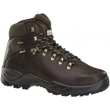 Sapatos Homem Botas baixas Chiruca Botas  Galicia 02 Goretex Castanho