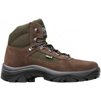 Sapatos Homem Sapatilhas de cano-alto Chiruca Botas  Perdiguero 02 Castanho