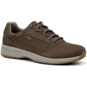 Sapatos Homem Sapatilhas Chiruca Zapatos  Toscana 21 Gore-Tex Castanho