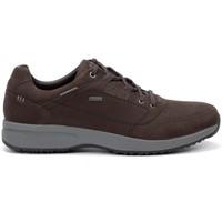 Sapatos Homem Sapatilhas Chiruca Zapatos  Toscana 32 Gore-Tex Castanho