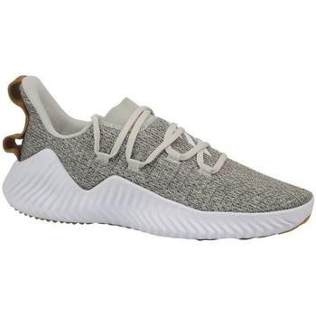 Sapatos Homem Fitness / Training  adidas Originals Alphabounce Trainer Branco, Cor bege