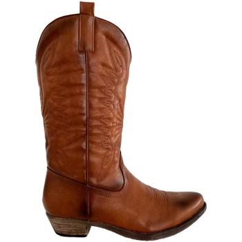 Sapatos Mulher Botas Kylie K1936307 Camel