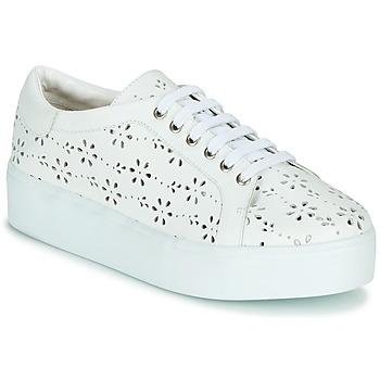Sapatos Mulher Sapatilhas Cristofoli NALA Branco