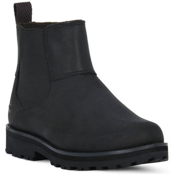 Sapatos Rapaz Botas baixas Timberland COURMA KID CHELSEA Nero