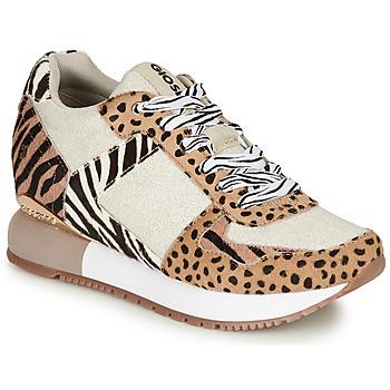 Sapatos Mulher Sapatilhas Gioseppo BIKANER Bege / Castanho