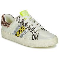 Sapatos Rapariga Sapatilhas Gioseppo TIRRENIA Branco / Amarelo / Prata
