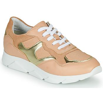 Sapatos Mulher Sapatilhas André HAVILAH Rosa