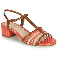 Sapatos Mulher Sandálias André PARISETTE Multicolor