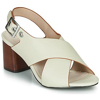 Sapatos Mulher Sandálias André JANNINE Bege