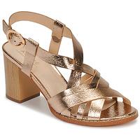 Sapatos Mulher Sandálias André PAYTON Ouro