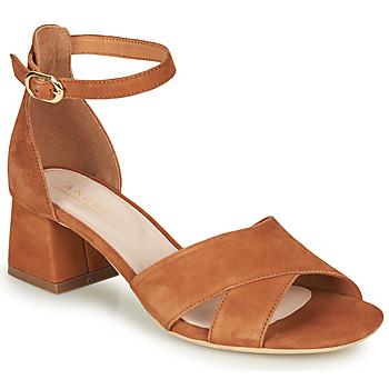 Sapatos Mulher Sandálias André JAYLA Camel