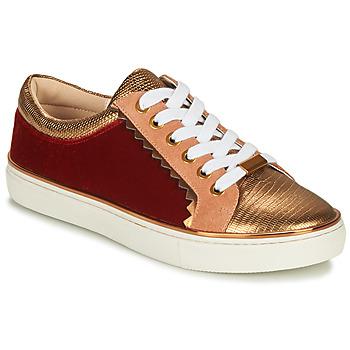 Sapatos Mulher Sapatilhas André LA FUNAMBULE Bronze