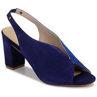 Sapatos Mulher Sandálias André L ILLUSIONISTE Azul