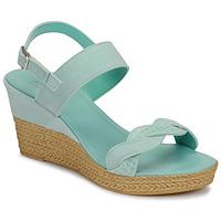Sapatos Mulher Sandálias André ELOISE Azul