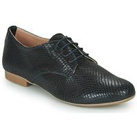 Sapatos Mulher Sapatos André COMPLICITY Marinho