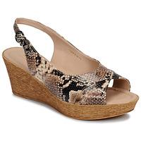 Sapatos Mulher Sandálias André DESTINEE Bege