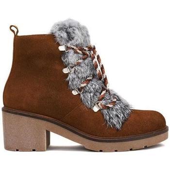 Sapatos Mulher Botins Sandra Fontan BROMUS Castanho