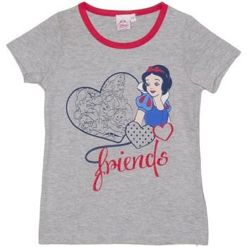 Textil Rapariga T-Shirt mangas curtas Disney Camiseta m/Corta Principesse Cinza