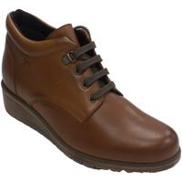 Sapatos Mulher Botas Pepe Menargues Bota atada para mulher  em marrón