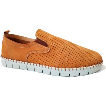 Sapatos Homem Mocassins Primocx Sapato homem amplo especial confortável marrón