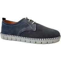 Sapatos Homem Sapatos Primocx Atacadores homem amplo especial confortá azul