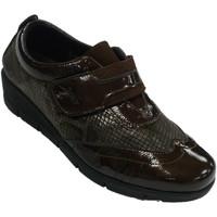 Sapatos Mulher Mocassins 48 Horas Sapatos femininos pele de velcro e cobra marrón