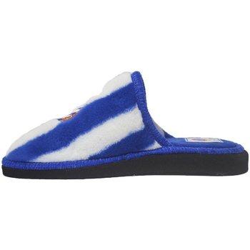 Sapatos Chinelos Andinas Zapatilolas Espanyol Azul