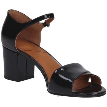 Sapatos Mulher Sandálias What For 170 Multicolore