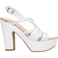 Sapatos Mulher Sandálias David Haron TRECCIA4TS Multicolore