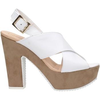 Sapatos Mulher Sandálias David Haron P09TC Multicolore
