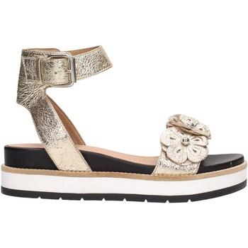 Sapatos Mulher Sandálias Janet Sport 41811 Multicolore