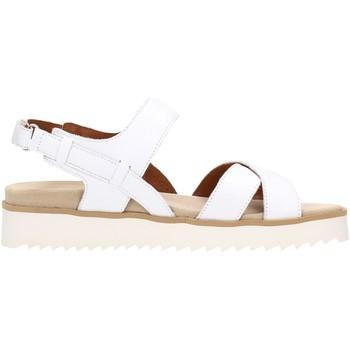 Sapatos Mulher Sandálias Benvado FRANCY Multicolore