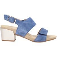 Sapatos Mulher Sandálias Benvado PAOLA Multicolore