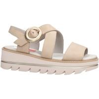 Sapatos Mulher Sandálias CallagHan 22703 Multicolore