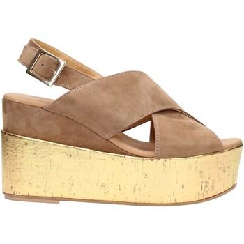 Sapatos Mulher Sandálias David Haron 02 F12 SUGOR Multicolore