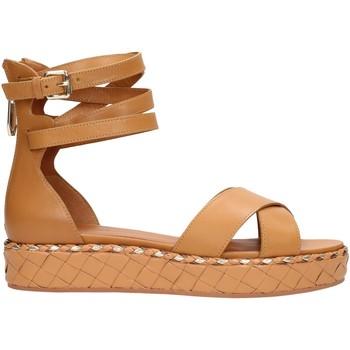 Sapatos Mulher Sandálias What For SS18WF548 Multicolore