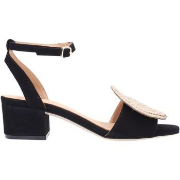 Sapatos Mulher Sandálias PALOMA BARCELÓ NOLANE Multicolore