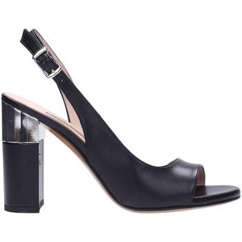 Sapatos Mulher Sandálias Albano 2121 Multicolore