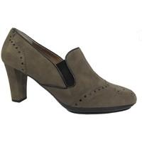 Sapatos Mulher Escarpim Valleverde 5801 Multicolore