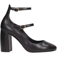 Sapatos Mulher Escarpim What For PF17WF055 Multicolore