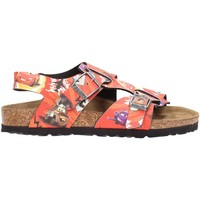 Sapatos Rapaz Sandálias Birkenstock IOS Multicolore