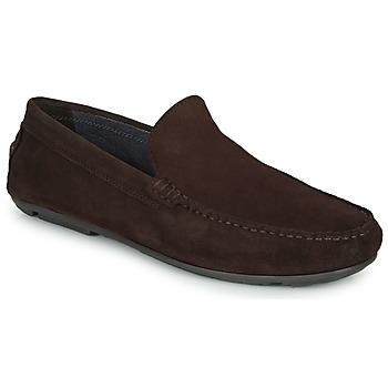 Sapatos Homem Mocassins André BIOUTY Castanho