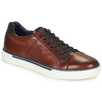 Sapatos Homem Sapatilhas André SHANN Castanho